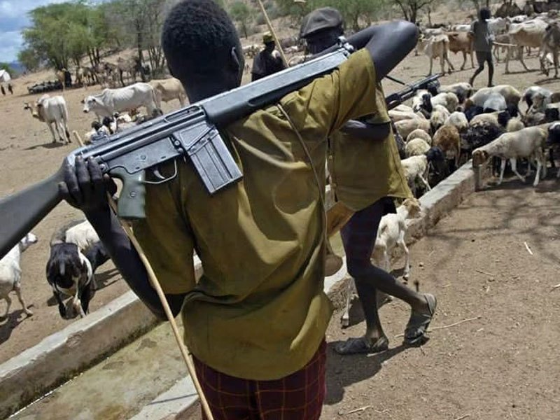 Herdsmen with sophisticated rifle
