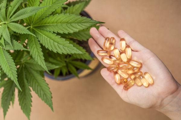 Australia set to export Medical cannabis
