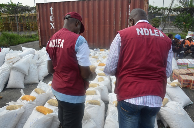 Men of the NDLEA at work