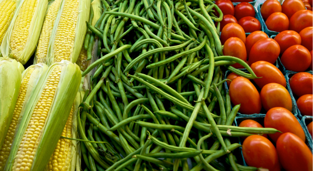 Some genetically modified foods - GMOs